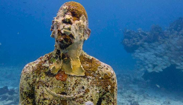 los manchones reef